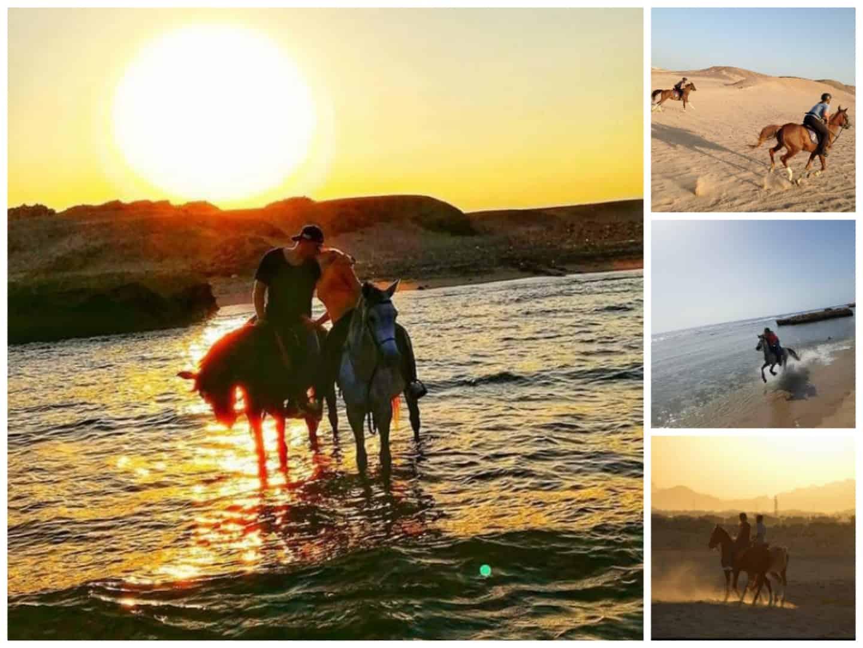 Pferde Ausritt in der Wüste& am Meer