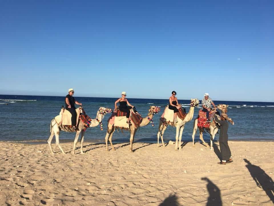 Kamele Reiten am Meer und in der Wüste