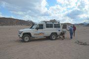 Wüsten Safari Ausflüge