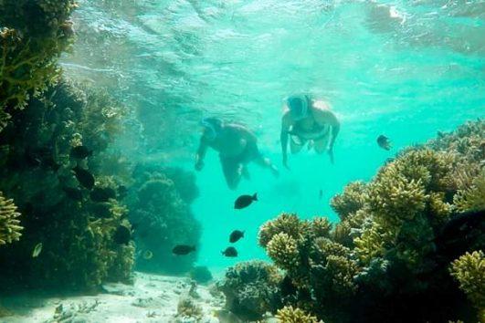 Schnorchelausflüge Hurghada und Bootsfahrten